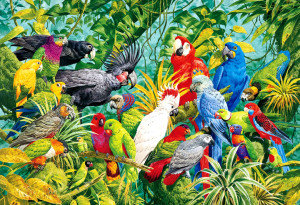 parrots' species