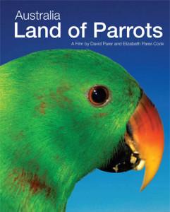 australia-land-of-parrots